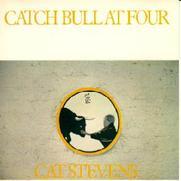 Catch_bull