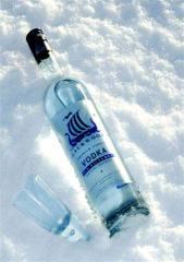 Frozen_vodka_bottle