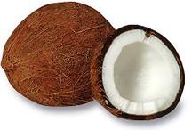 Coconut_fruit