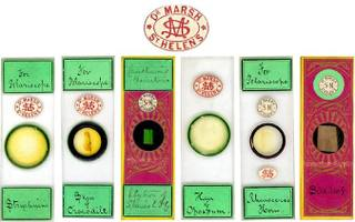 Antique_microscope_slides