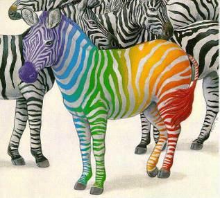 Zebra_color