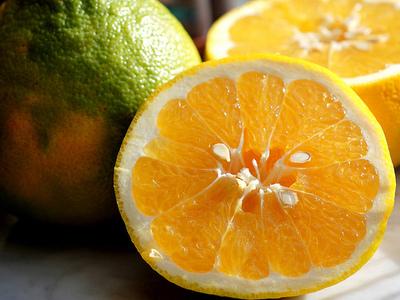 Cocktail_grapefruits