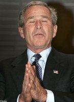 Praying_bush