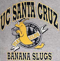 Banana_slugs