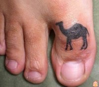 Real_camel_toe