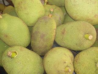 My_jackfruit