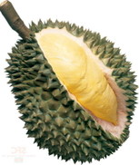Durian_chocolate_2