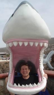 Mexico_cruise_shark