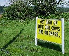 High_milk