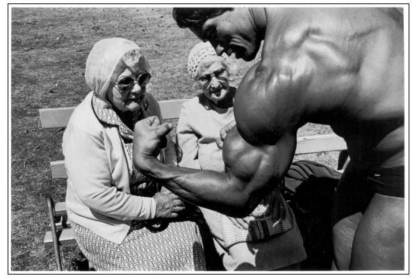 arnold255