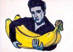 Elvis_pelvis_1