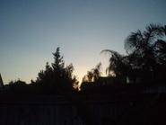 Evening_light