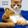 Kitty_porn