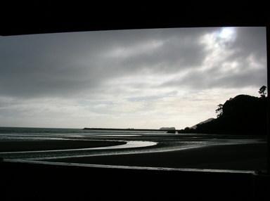 Kiwi_project
