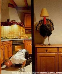 Turkey_dinners