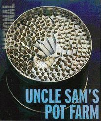 Uncle_sam_1