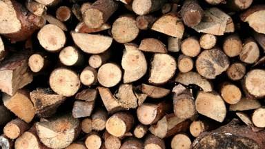 Winter_wood