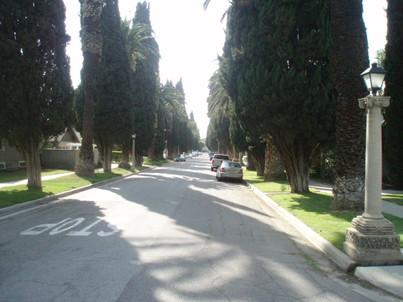 Wood_streets
