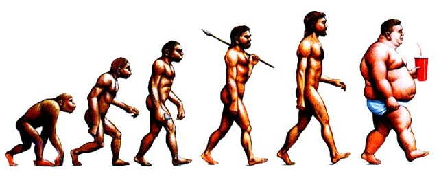 The theory of evolution is a naturalistic theory of the history of life on