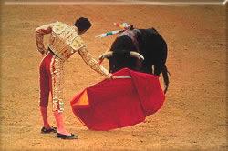 Bullfight_spain