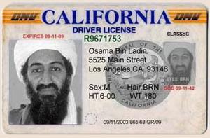 Ca_license_driver