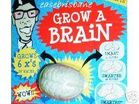 Grow_a_brain_game